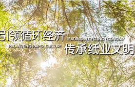 安徽山鹰纸业股份有限公司-上海aoa体育网站制作